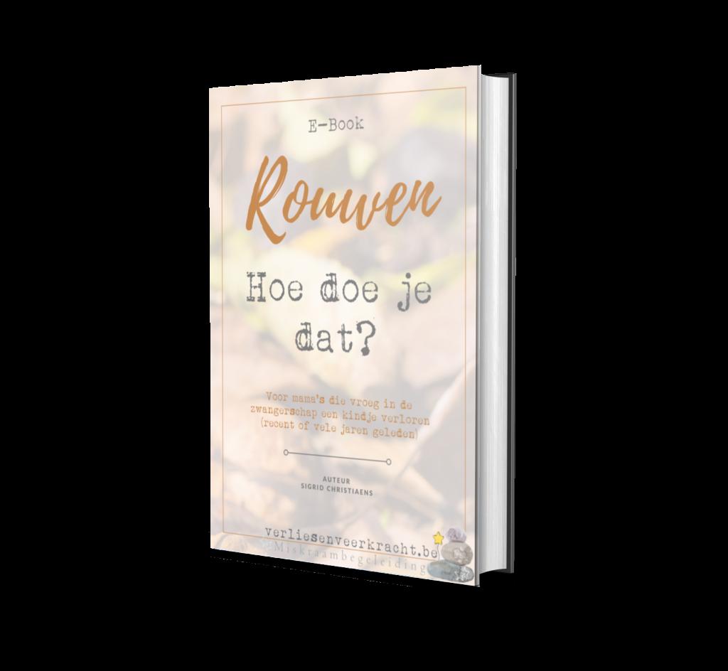 E-Book Rouwen | Verlies & Veerkracht